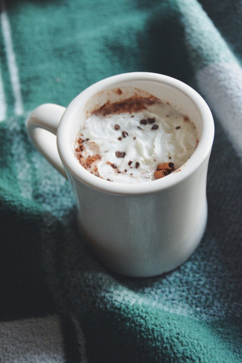homemade hot cocoa | doughing it right